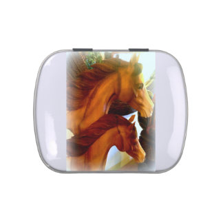 mare and pony candy tin