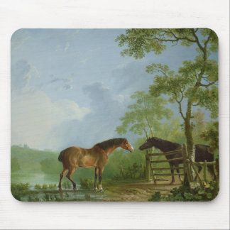 Mare and Stallion in a Landscape Mouse Pad