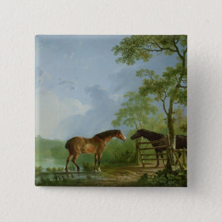 Mare and Stallion in a Landscape Pinback Button