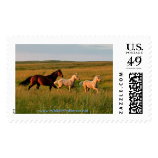 Mare and Twin Foals Horse Babies Postage Stamps