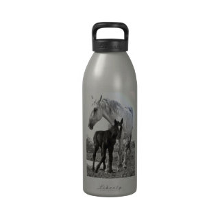 Mare & Colt Gifts Reusable Water Bottles