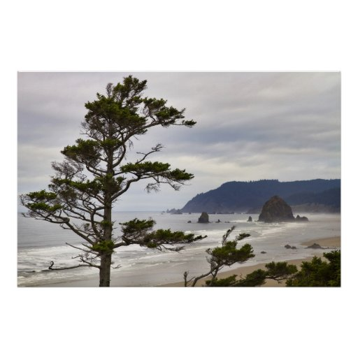 Marea baja de la playa del cañón en el Océano Pací Posters