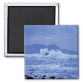 mares agitados que se estrellan contra una orilla  imán para frigorífico