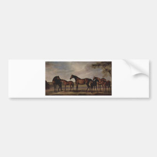 Mares and foals are anxious before a looming storm bumper sticker