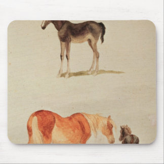 Mares and foals mouse pad