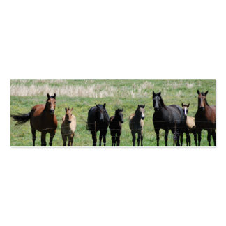 """""""Mares & Foals"""" Bookmark Double-Sided Mini Business Cards (Pack Of 20)"""