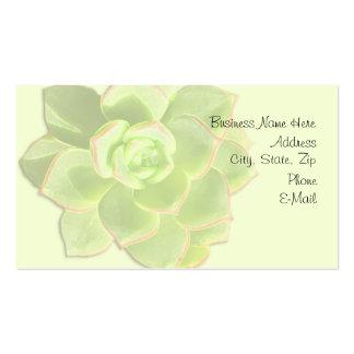 Marfil suculenta verde tarjetas de visita