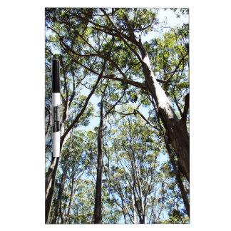 Margaret river Forest Dry-Erase Board