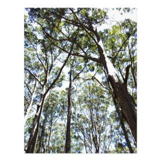 Margaret river Forest Letterhead