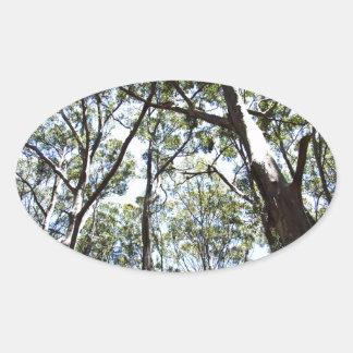 Margaret river Forest Oval Sticker