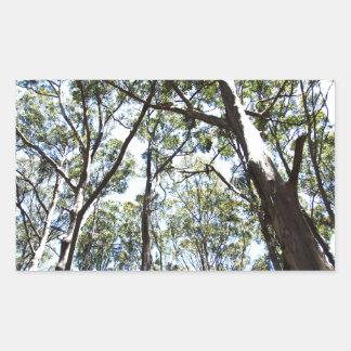 Margaret river Forest Rectangular Sticker