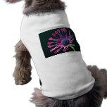Margarita africana camisetas de perro
