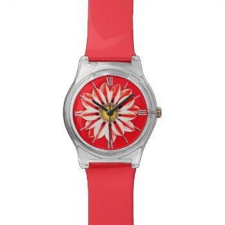 Margarita africana/Gazania - rojo y blanco rayado Reloj
