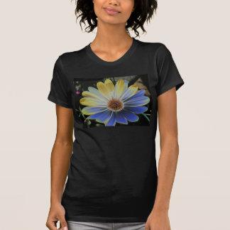 Margarita africana Lapis y camiseta de las señoras Poleras