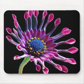 Margarita africana mouse pad