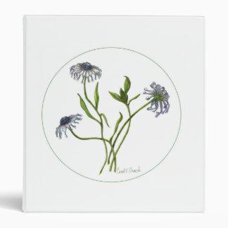 Margarita africana Osteospermum