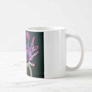 Margarita africana taza clásica