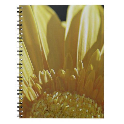 Margarita amarilla del Gerbera Cuadernos