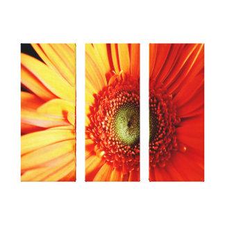 Margarita anaranjada brillante impresión en lona estirada