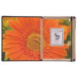 Margarita anaranjada del Gerbera iPad Carcasa