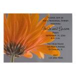 Margarita anaranjada en cena gris del ensayo del invitación 12,7 x 17,8 cm