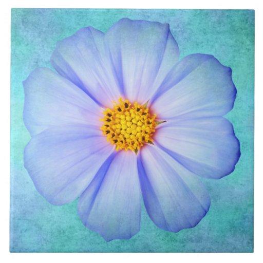 Margarita azul y púrpura del trullo en acuarela de azulejo cuadrado grande