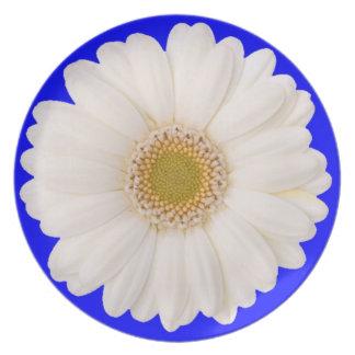 Margarita blanca con el fondo azul plato de cena