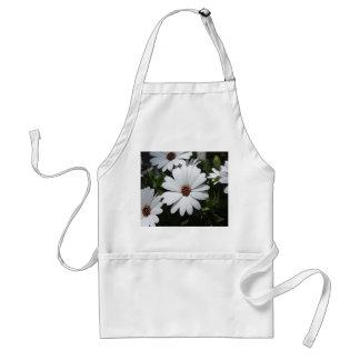 Margarita blanca en la floración delantal