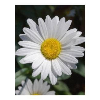 Margarita blanca plantilla de membrete