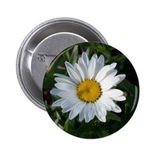 Margarita blanca pin redondo 5 cm