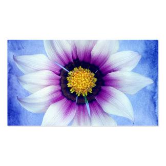 Margarita blanca y púrpura en el fondo azul tarjetas de visita