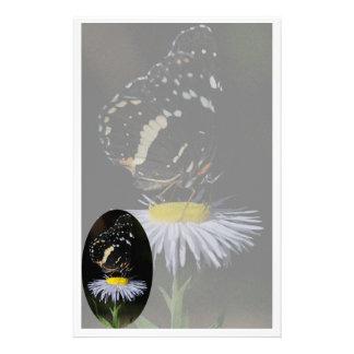 Margarita de la mariposa inmóvil papeleria