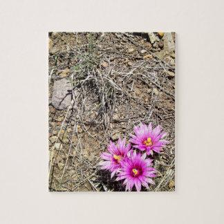 Margarita del cactus del desierto puzzle con fotos