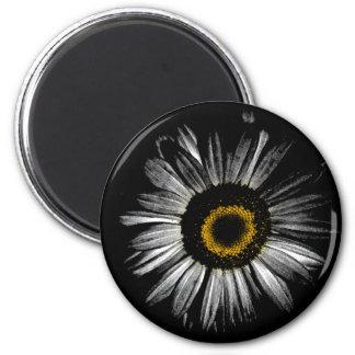 Margarita del cuarto oscuro imán redondo 5 cm
