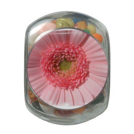 Margarita del Gerbera del rosa en colores pastel Frascos Cristal