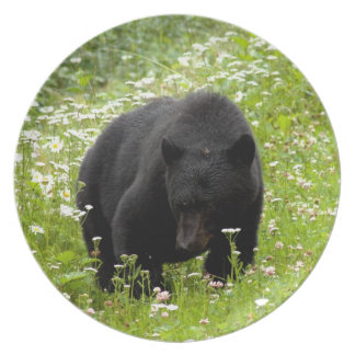 Margarita el oso negro; Ningún texto Plato Para Fiesta