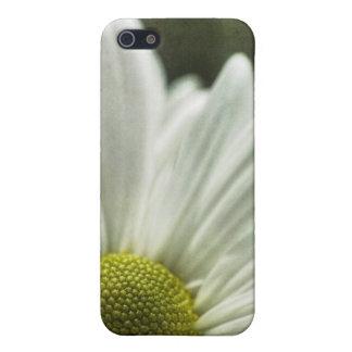margarita iPhone 5 protectores