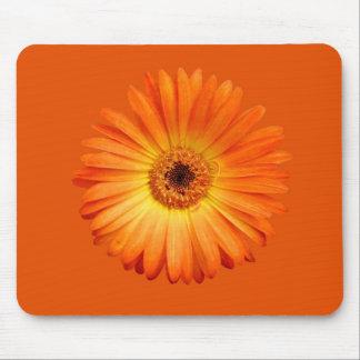 Margarita hermosa del Gerbera del naranja y del Mouse Pads