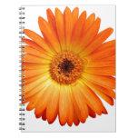 Margarita hermosa del Gerbera del naranja y del Spiral Notebooks