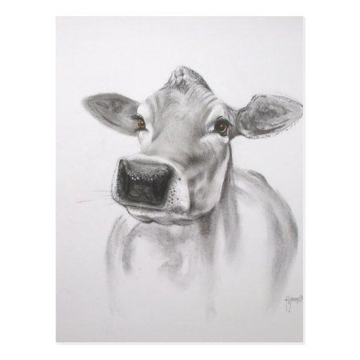 Margarita la postal de la vaca