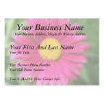 Margarita pintada rosas fuertes plantilla de tarjeta de negocio
