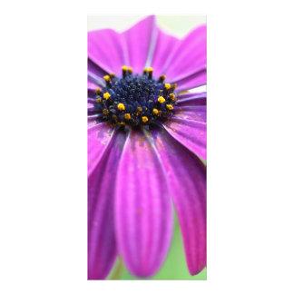 Margarita púrpura adaptable tarjetas publicitarias a todo color
