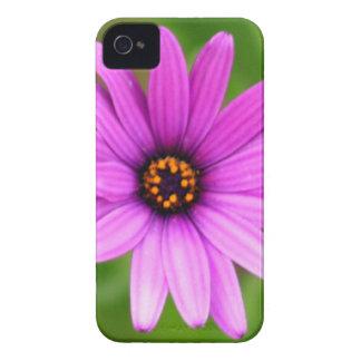 Margarita púrpura Case-Mate iPhone 4 carcasas