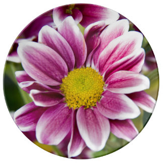 Margarita púrpura plato de cerámica