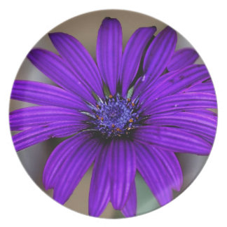 Margarita púrpura y su significado plato de cena