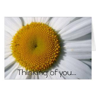 Margarita que piensa en usted… felicitación