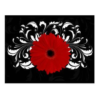 Margarita roja brillante del Gerbera en negro Tarjetas Postales
