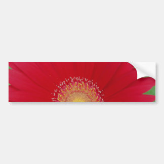 margarita roja del gerber etiqueta de parachoque