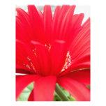 margarita roja del gerber: plantillas de membrete