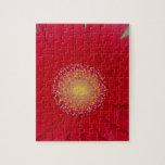 margarita roja del gerber puzzles